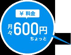 月々600円ちょっと